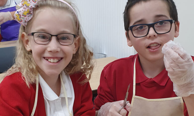 Primary Science Students Dissect an Eyeball! 👁